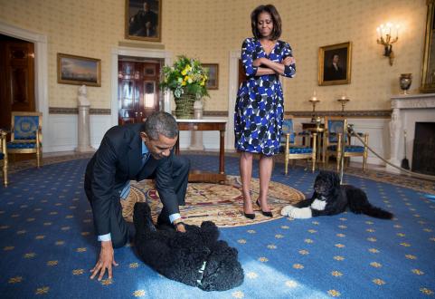 obama-dogs